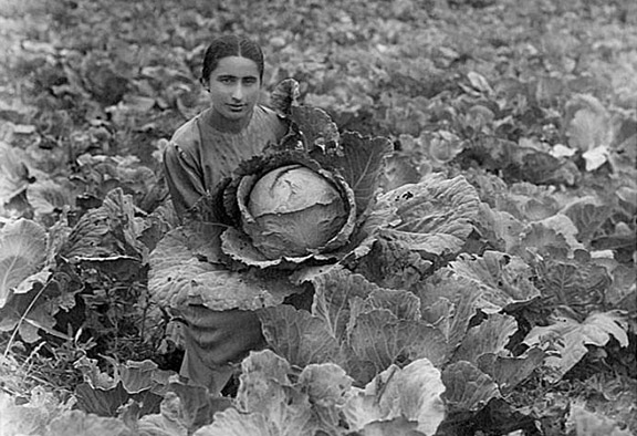 Maria Esayan (1916-1998), an agronomist in Dilijan, Armenia. (Photo: Dilijan Centralized Library System)