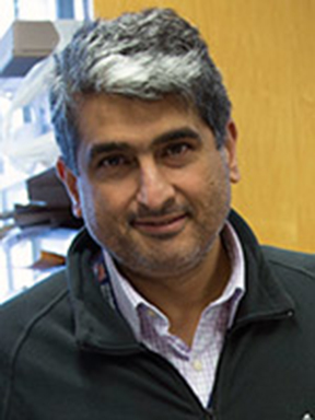 Dr. Ara Nazarian helped develop the technology for making skis faster
