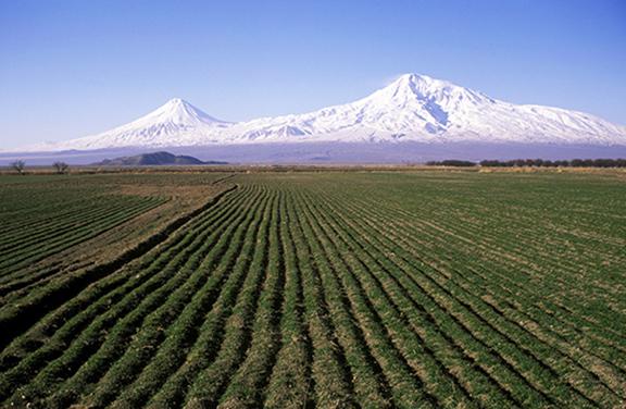 The farms in the Ararat Valley (Photo by Hrair Hawk Khatcherian)