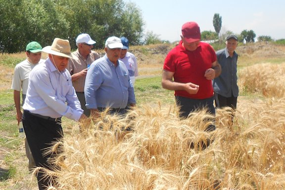 For the 2018-2019 growing season, more than 700 acres of farmland were sown by the Armenian Technology Group, Inc., to produce assorted varieties of seeds in Armenia.
