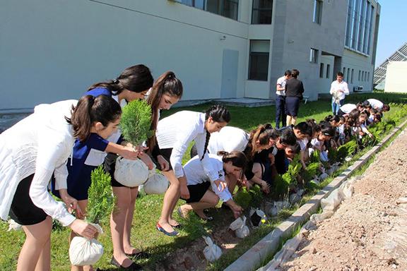 Avedisian School students planting trees