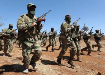 Using Terrorist Groups for Military Ends Unacceptable, Yerevan tells CSTO